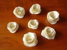 5-roselline-d-3