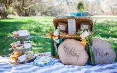 wedding-pic-nic-come-nozze-alternative