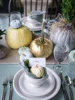 ci_hortus-ltd-mini-pumpkins-jpg-rend-hgtvcom-966-1288