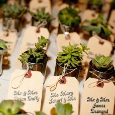 decorazioni-di-matrimonio-con-piante-in-vaso