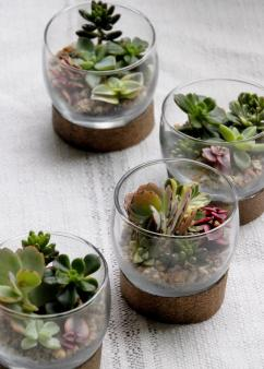 original_hgtv-mcaughey-mini-terrarium-tablesettings-003-jpg-rend-hgtvcom-966-1352